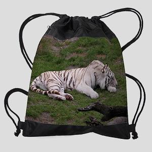 DSCN4253 Drawstring Bag