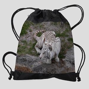 DSCN7349 Drawstring Bag