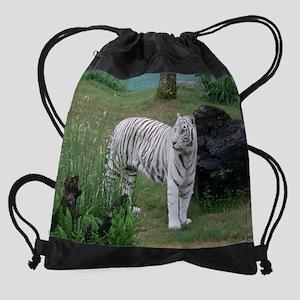 P1020685 Drawstring Bag