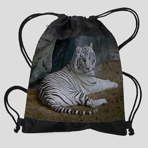 P1020728 Drawstring Bag