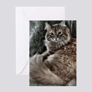 The Cat Greeting Cards