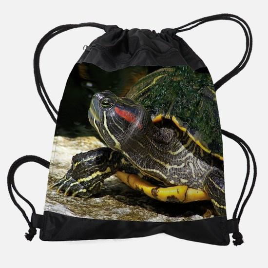 DSCN1030.JPG Drawstring Bag