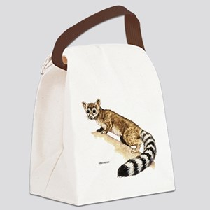 Ringtail Wild Cat Canvas Lunch Bag