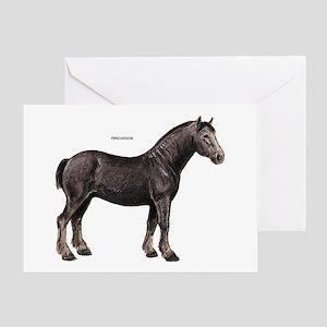 Percheron Horse Greeting Card