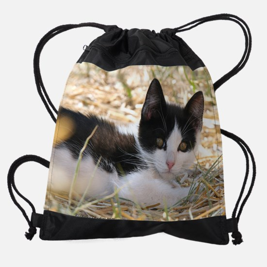 Taos Cat 26 Drawstring Bag