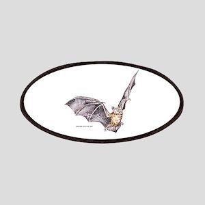 Brown Myotis Bat Patches