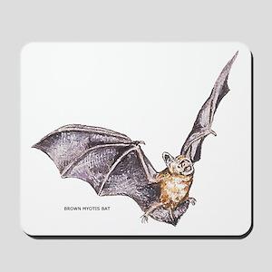 Brown Myotis Bat Mousepad