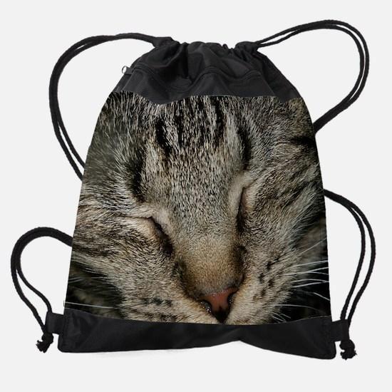 Kitten for calendar14.png Drawstring Bag