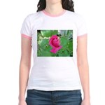 Beautiful Rose Photo Jr. Ringer T-Shirt