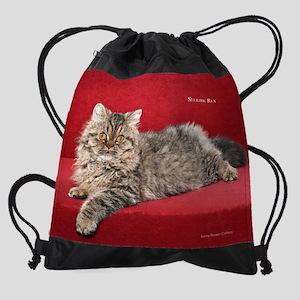 Show Cat Calendar Drawstring Bag
