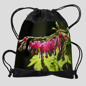 DryBrush3 Drawstring Bag