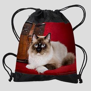 Ragdoll Cat Wall Calendar Drawstring Bag