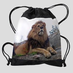 lion Drawstring Bag