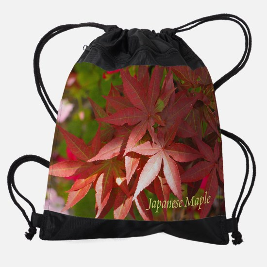 LRS Cal Wall 08 10.png Drawstring Bag