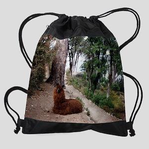 11.5x9_print llama Drawstring Bag