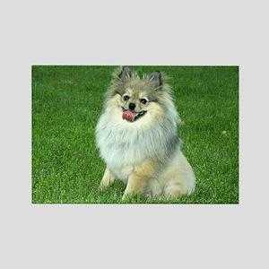Pomeranian Dog Days Rectangle Magnet