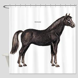 Morgan Horse Shower Curtain