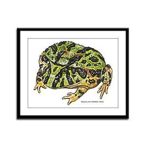Brazilian Horned Frog Framed Panel Print