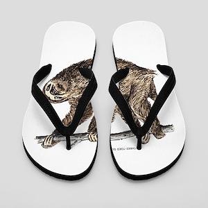 Three-Toed Sloth Flip Flops