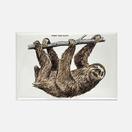 Three-Toed Sloth Rectangle Magnet