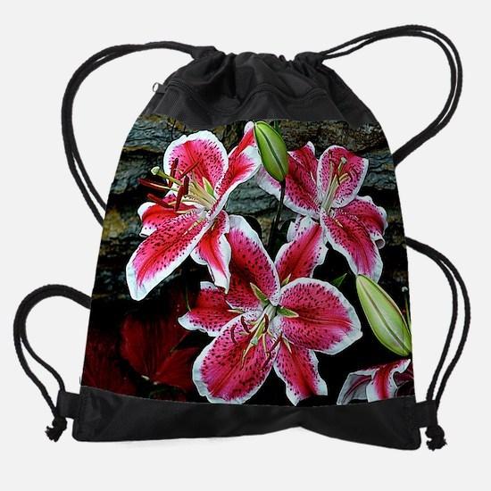 Lilly Explosion Drawstring Bag