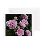 Think Pink Roses Greeting Cards (Pk of 10)