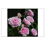 Think Pink Roses Large Poster