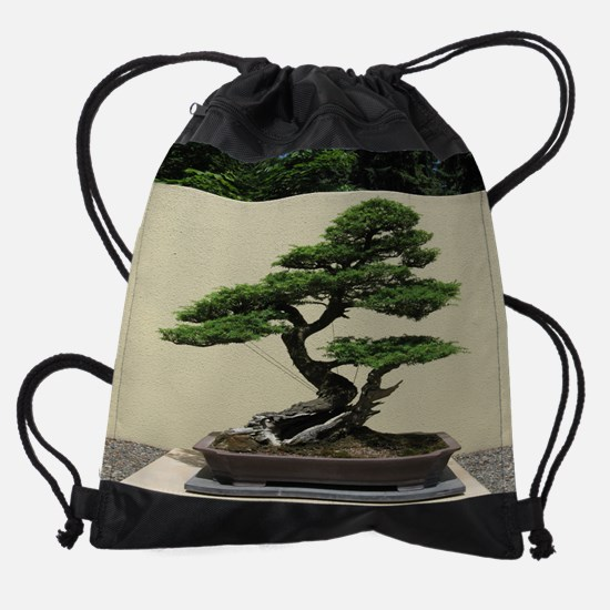 75_H_F.png.3.png Drawstring Bag