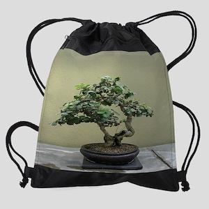 75_H_F4 Drawstring Bag