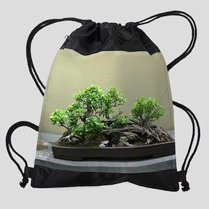 75_H_F5 Drawstring Bag