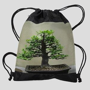 75_H_F9 Drawstring Bag