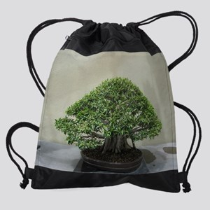 75_H_F10 Drawstring Bag