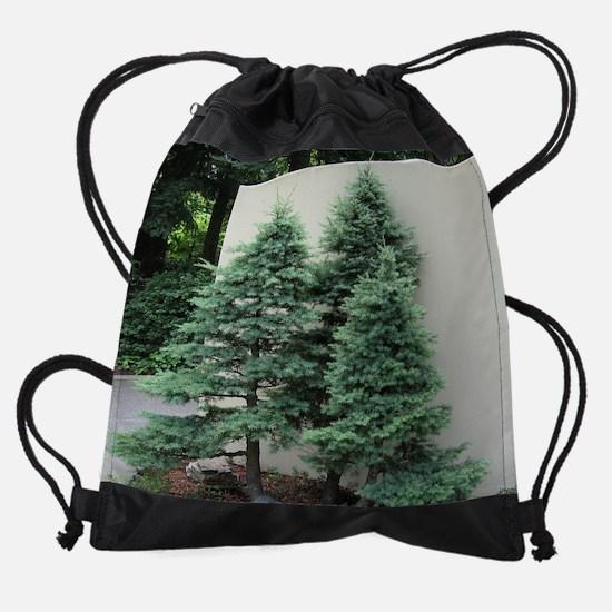 75_H_F12.png Drawstring Bag