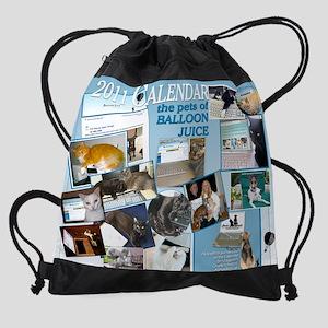 BJ FundRaising Calendar 2011 (Print Drawstring Bag