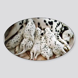 dalmation mom and pups Sticker
