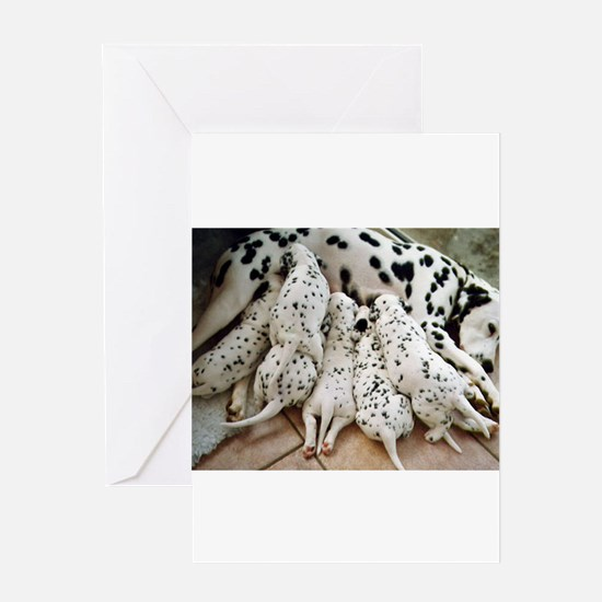 dalmation mom and pups Greeting Cards