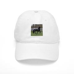 BARON Baseball Cap