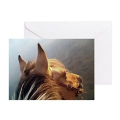 Bonnie Greeting Cards (Pk of 10)