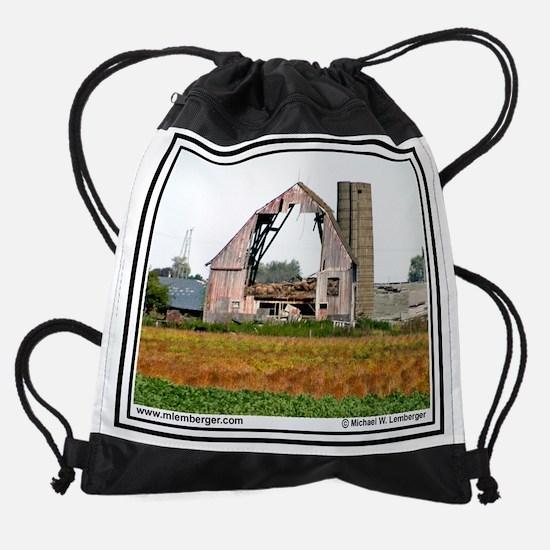 03-2ndHandLions.jpg Drawstring Bag