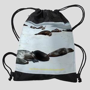 espanola islands sea lions calendar Drawstring Bag