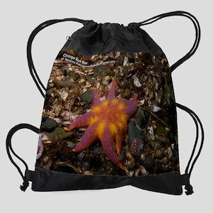 Cal_OrangSunStar_P5210068 Drawstring Bag
