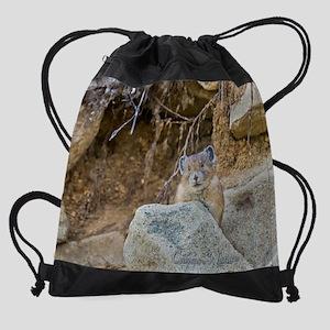 _MG_8577 Drawstring Bag