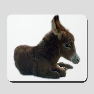 donkey colt Mousepad
