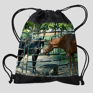 silk pico Drawstring Bag