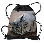 tabbyCALENDAR - WALL 75_H_F.png Drawstring Bag