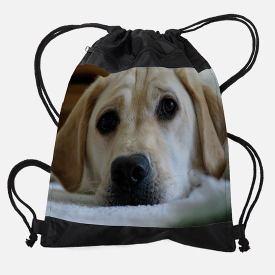 Bella-face-on-floor.png Drawstring Bag