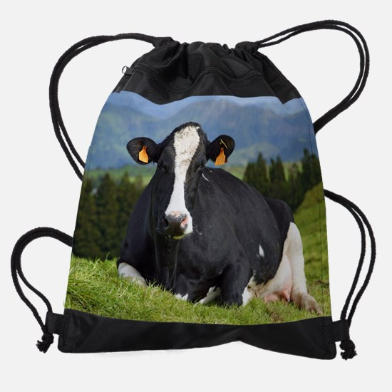 Holstein cow Drawstring Bag