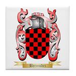 Bermudez Tile Coaster