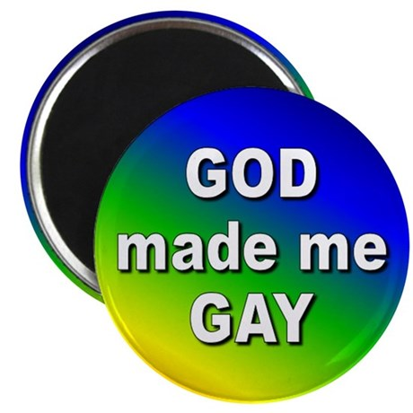 BUTTON made me gay2 Magnets