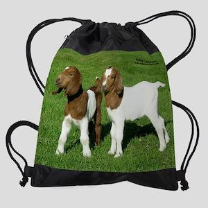 wendy.ed Drawstring Bag